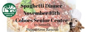 Spaghetti Dinner @ Cohoes Senior Citizen Center