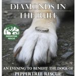 Diamonds in the Ruff – Friday February 2nd!