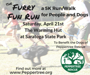 Furry Fun Run - 5k Walk/Run for People and Dogs! @ The Warming Hut at the Saratoga Springs State Park