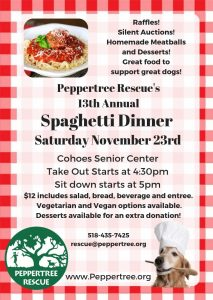Spaghetti Dinner @ Cohoes Senior Center