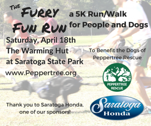 Furry Fun Run/Walk - 5k for People and Dogs! @ Warming Hut