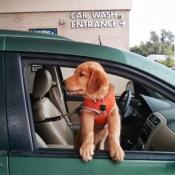 Hoffman Car Wash Fundraiser is Live!
