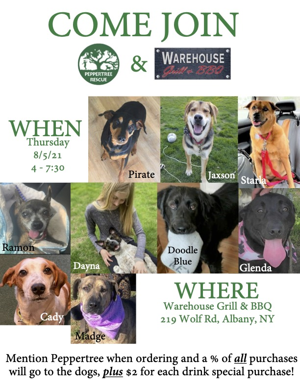 Fundraiser: Dogs on the Deck @ Warehouse Grill & BBQ