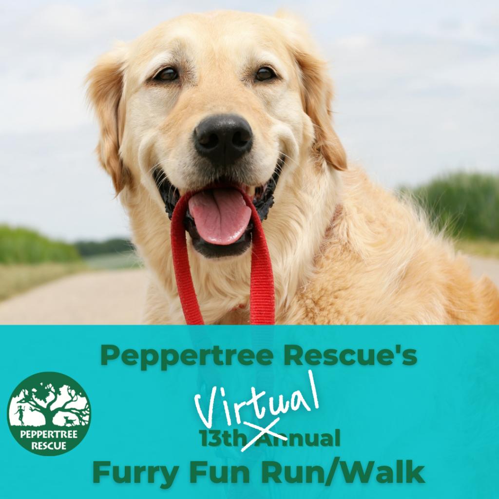 VIRTUAL Furry Fun Run @ CharityFootprints.com